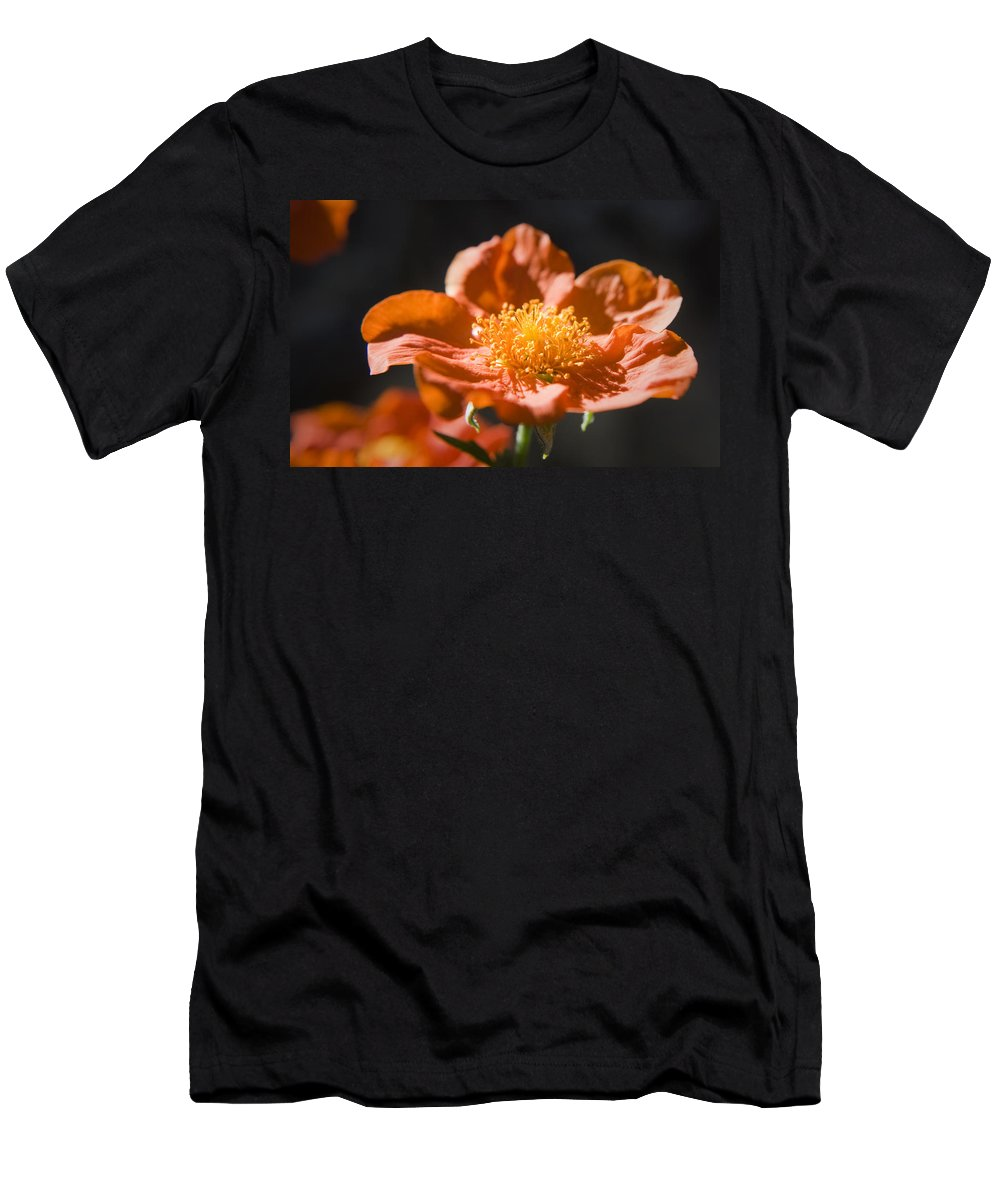 Geum Men's T-Shirt (Athletic Fit) featuring the photograph Geum Scarlet Avens by Teresa Mucha