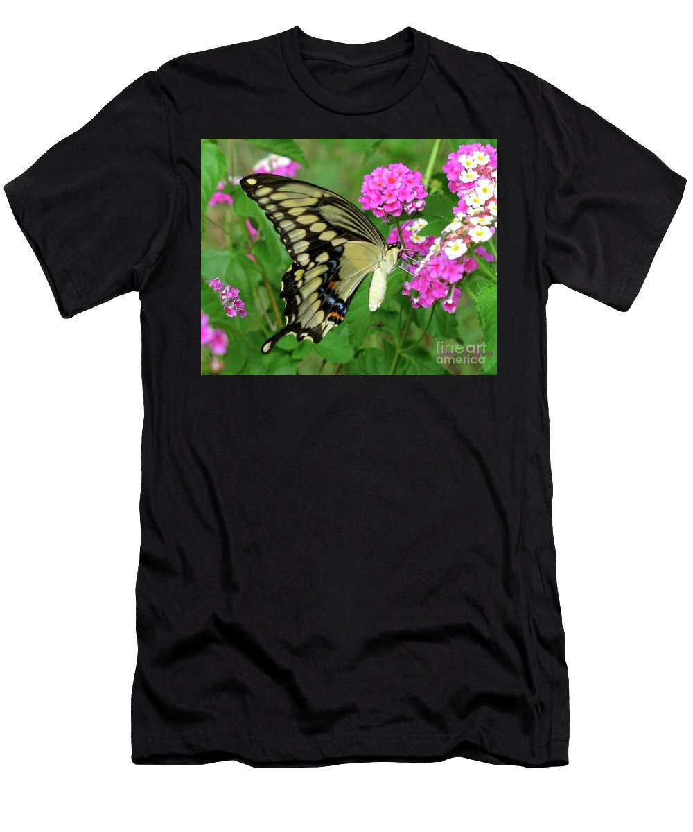 Insect Men's T-Shirt (Athletic Fit) featuring the photograph Giant Swallowtail Butterfly IIi by Donna Brown