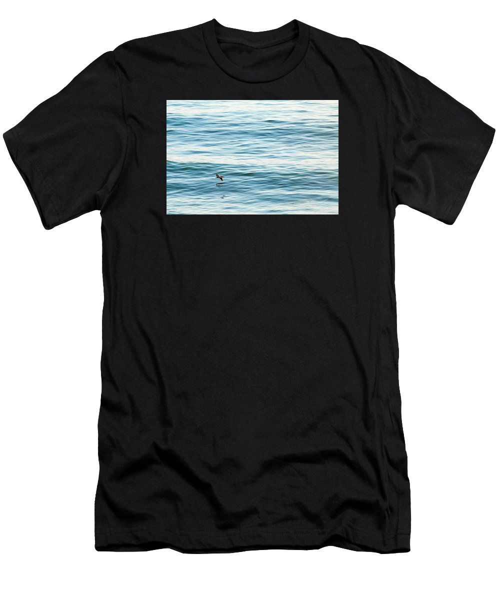 Pelican Men's T-Shirt (Athletic Fit) featuring the photograph Glider by Zach Brown