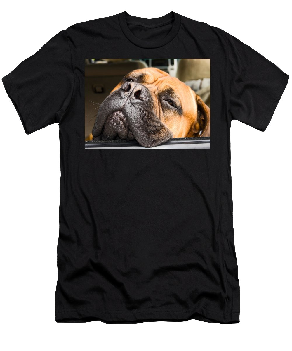 Mastif Dog Men's T-Shirt (Athletic Fit) featuring the photograph Going To Sleep by Sally Weigand