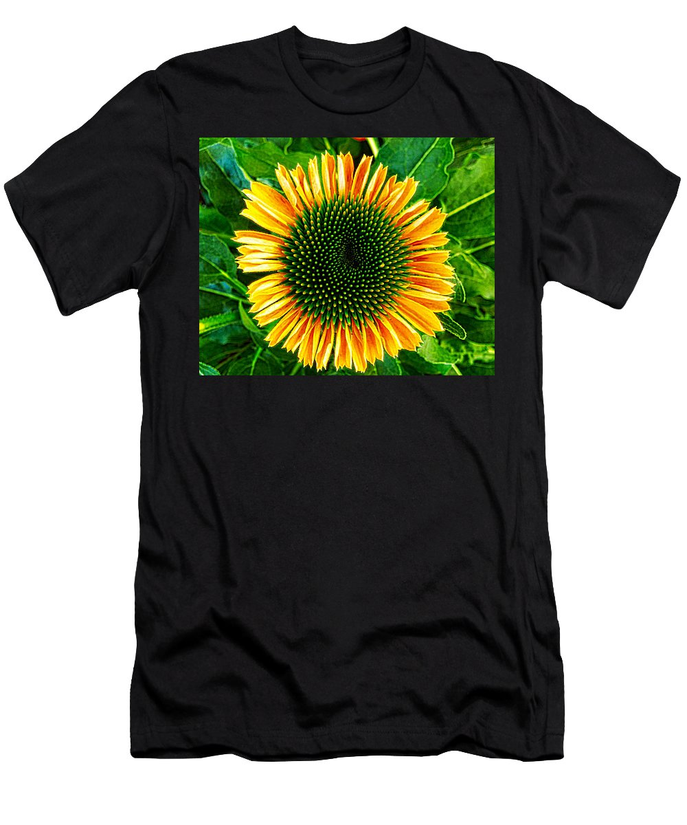 Cone Flower Men's T-Shirt (Athletic Fit) featuring the photograph Golden Cone Flower by Kathy Barney