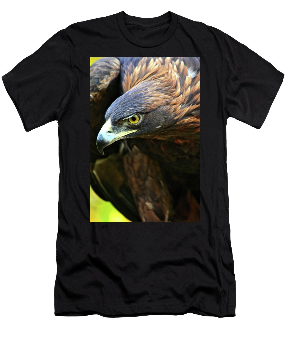 Golden Eagle Men's T-Shirt (Athletic Fit) featuring the photograph Golden Eye by Scott Mahon