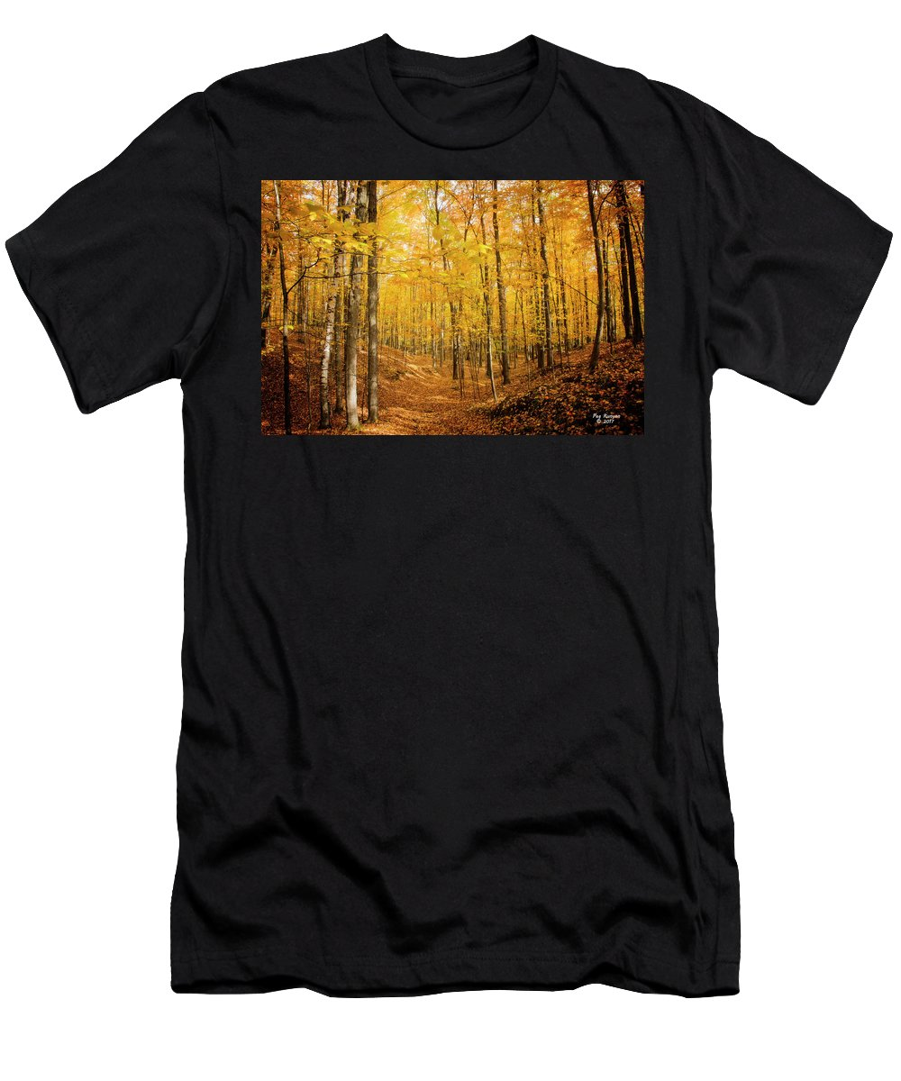 Autumn Forest Men's T-Shirt (Athletic Fit) featuring the photograph Golden Glory by Peg Runyan