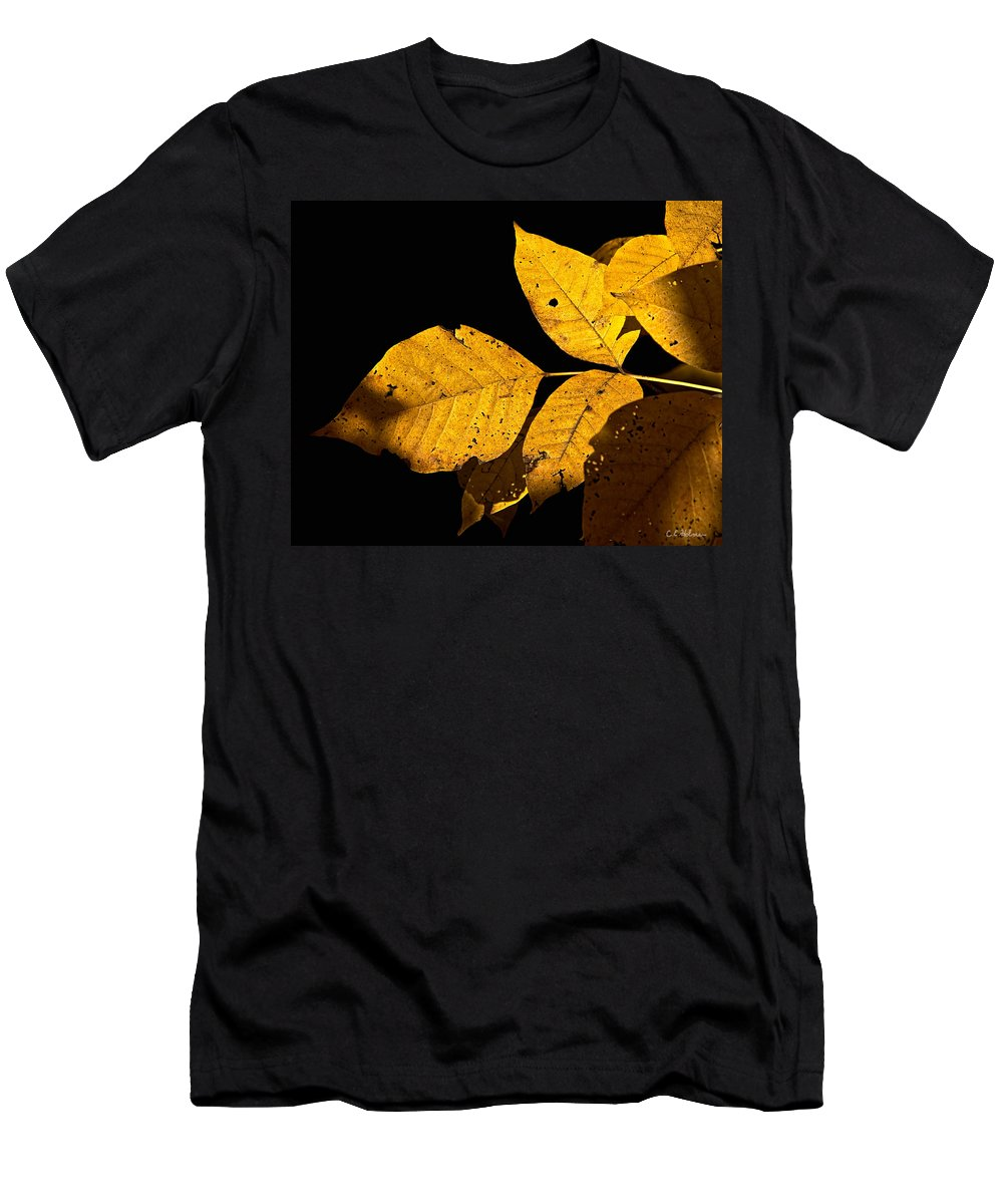 Gold Men's T-Shirt (Athletic Fit) featuring the photograph Golden Glow by Christopher Holmes
