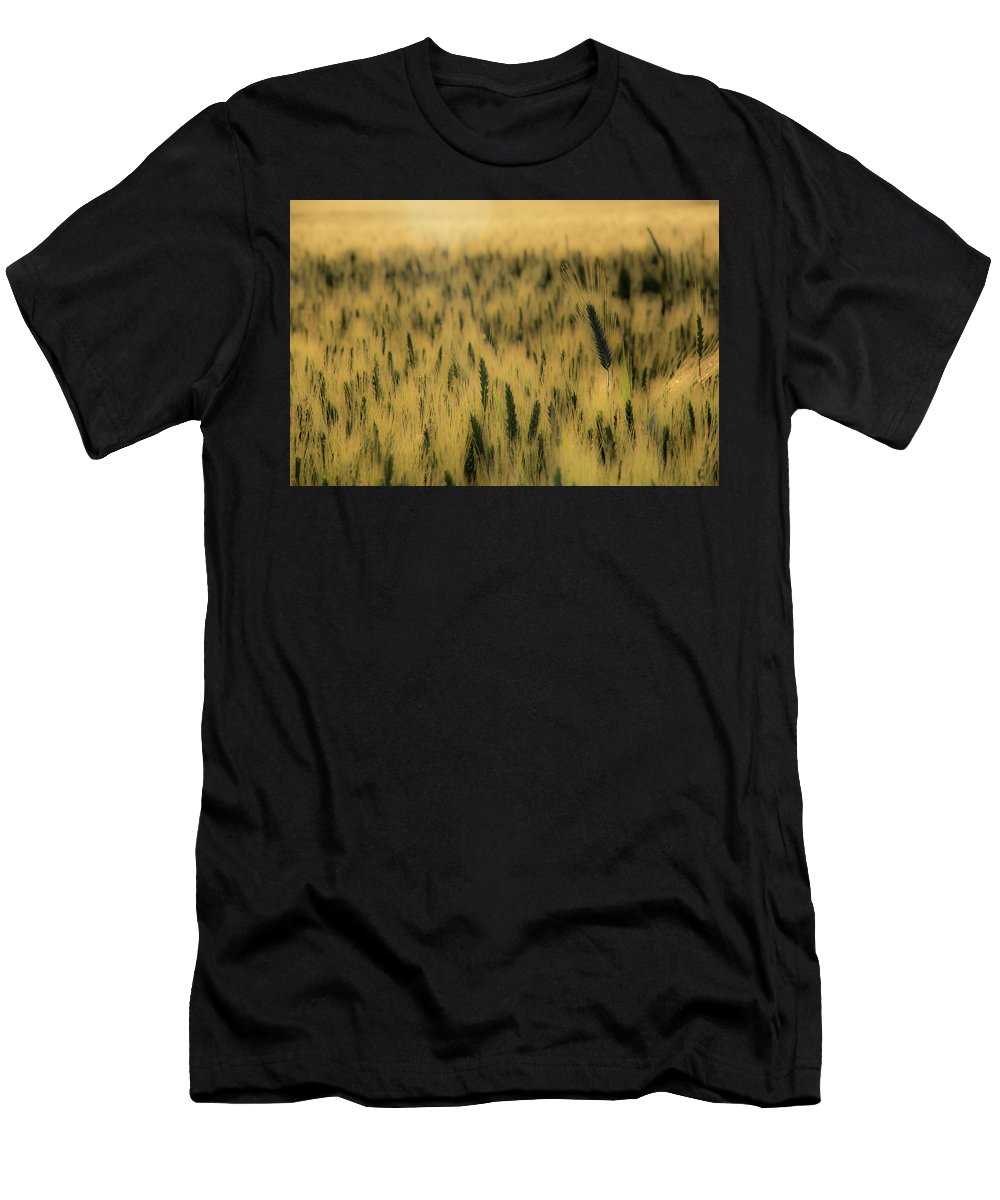 Sunset Men's T-Shirt (Athletic Fit) featuring the photograph Golden Hour by Andrei Marius