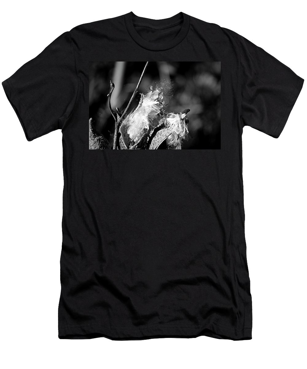 Seed Men's T-Shirt (Athletic Fit) featuring the photograph Gone To Seed Milkweed 2 by Teresa Mucha