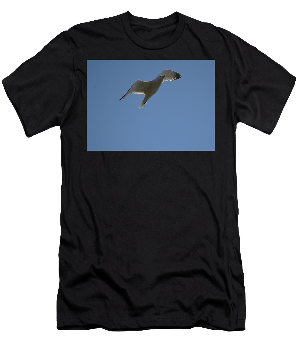 Grace Men's T-Shirt (Athletic Fit) featuring the photograph Grace by Hella Buchheim