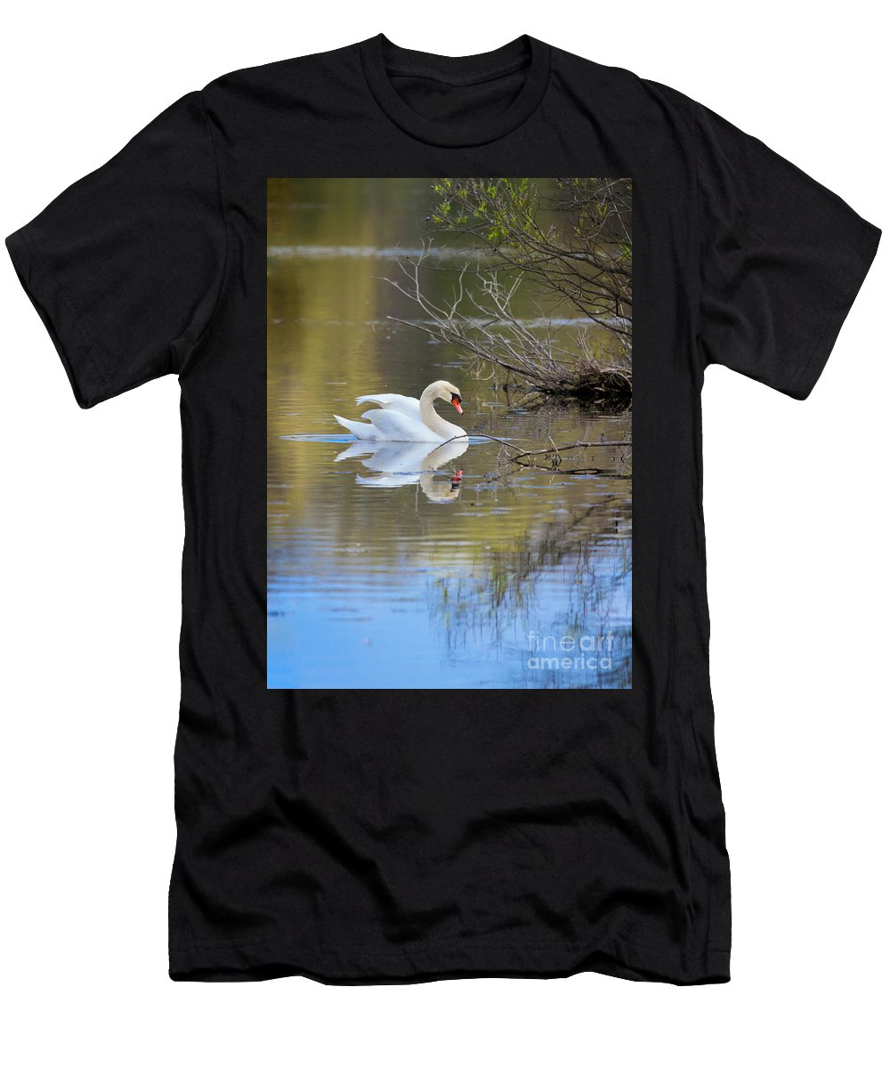 Mute Swans Men's T-Shirt (Athletic Fit) featuring the photograph Graceful Swan by Karen Jorstad
