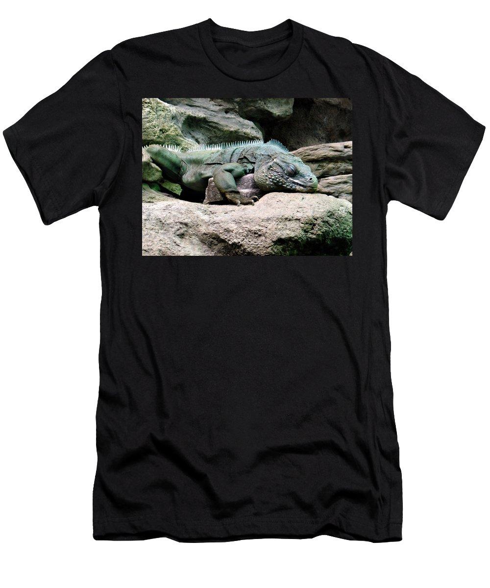 Lizard T-Shirt featuring the photograph Grand Cayman Blue Iguana by Angelina Tamez