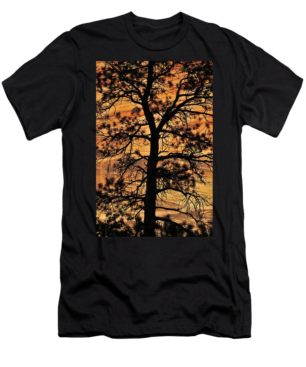 Grandfather Men's T-Shirt (Athletic Fit) featuring the photograph Grandfather by Skip Hunt