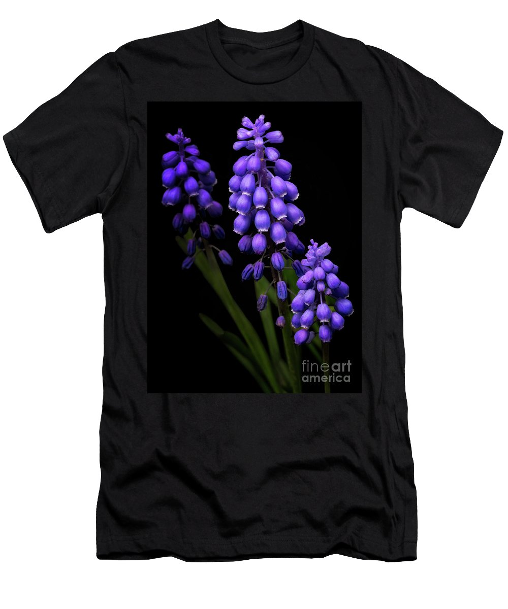 Purple Men's T-Shirt (Athletic Fit) featuring the photograph Grape Hyacinths by Emma England