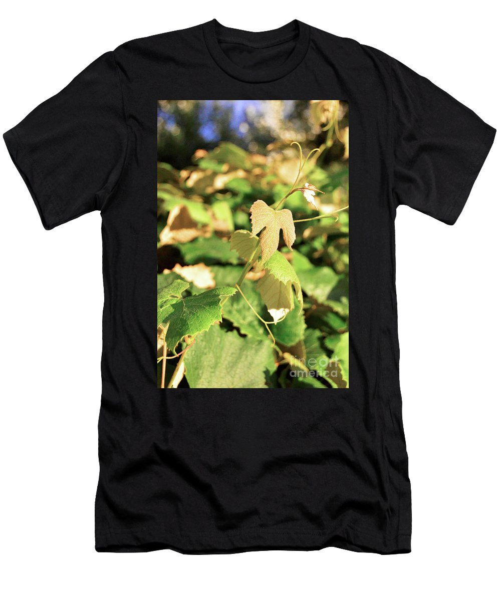 Grapes Men's T-Shirt (Athletic Fit) featuring the photograph Grape Vine 3 by Janie Johnson