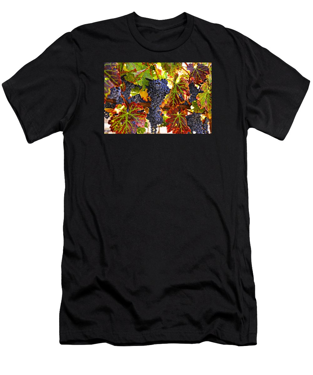 Grapes Men's T-Shirt (Athletic Fit) featuring the photograph Grapes On Vine In Vineyards by Garry Gay