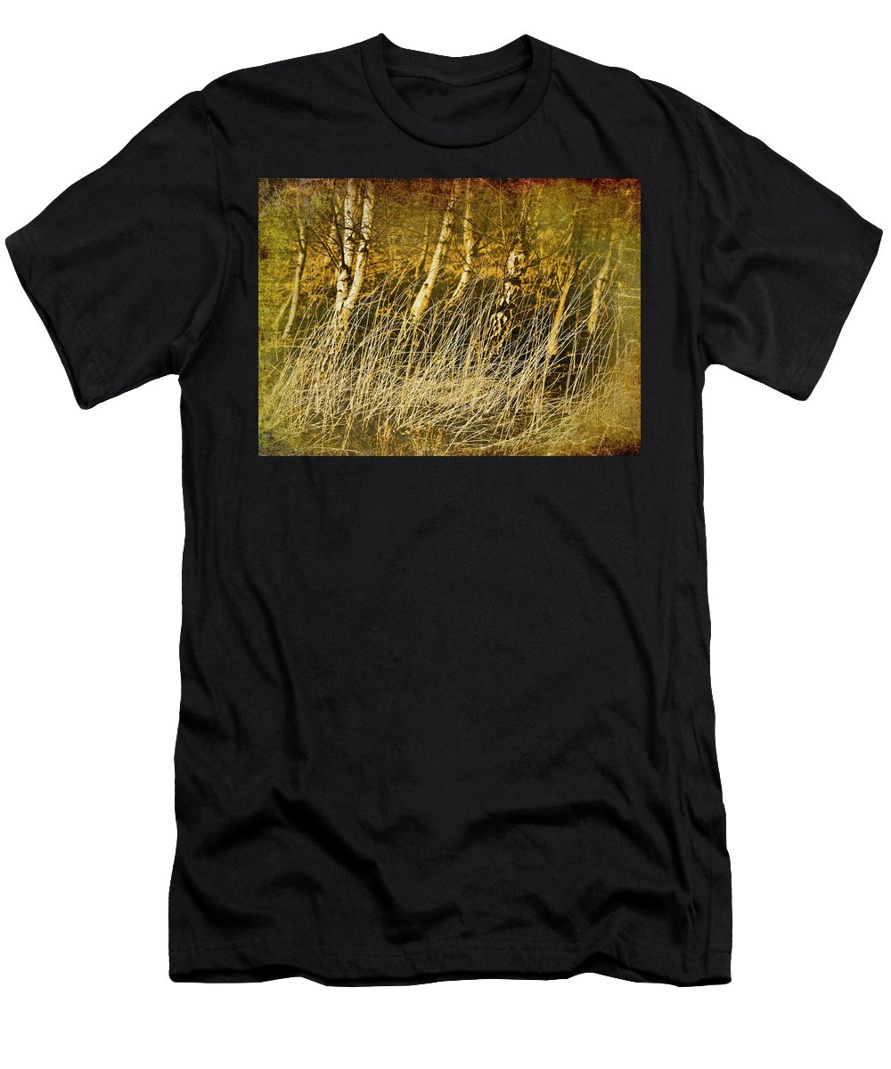 Birch Men's T-Shirt (Athletic Fit) featuring the photograph Grass And Birch by Meirion Matthias