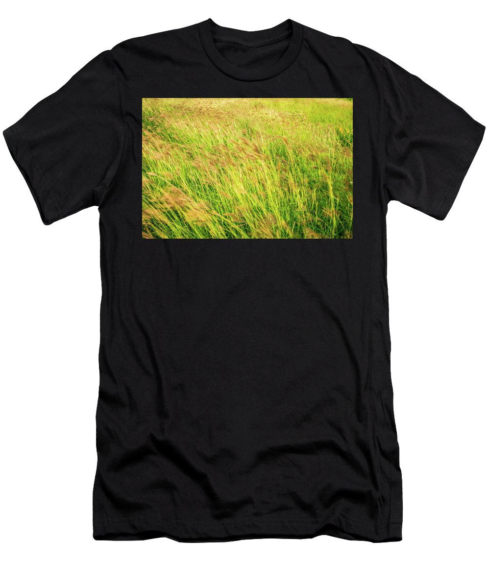 Grass Men's T-Shirt (Athletic Fit) featuring the photograph Grass Field Landscape Illuminated By Sunset by Alex Grichenko