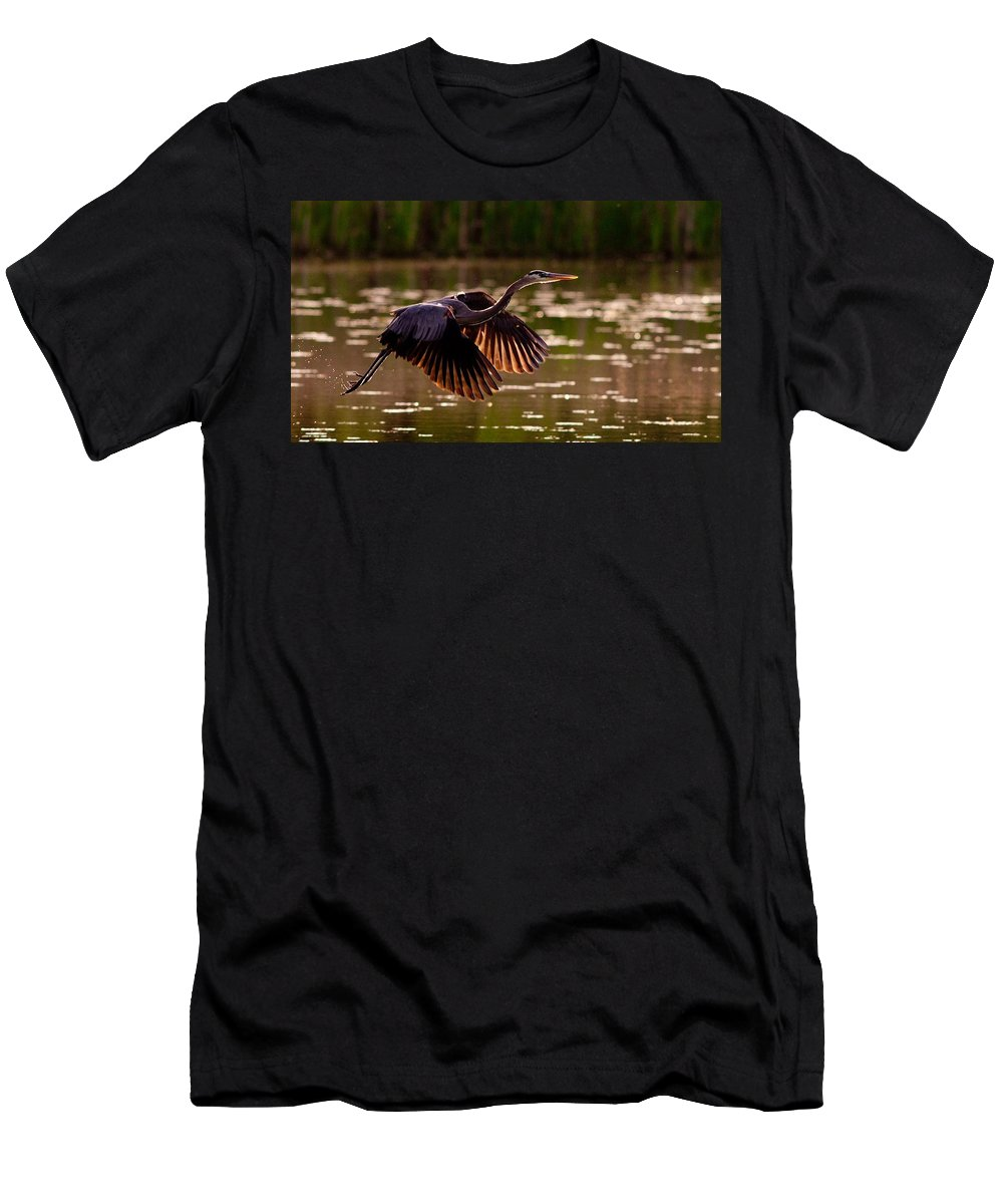 Gray Heron Men's T-Shirt (Athletic Fit) featuring the digital art Gray Heron by Dorothy Binder