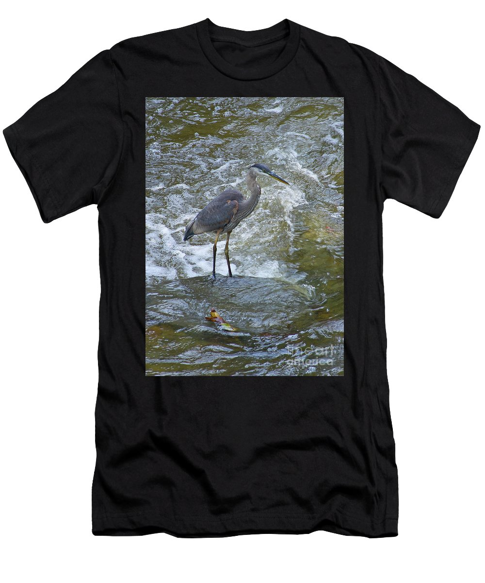Birds Men's T-Shirt (Athletic Fit) featuring the photograph Great Blue Heron Standing In Stream by Wayne Heim