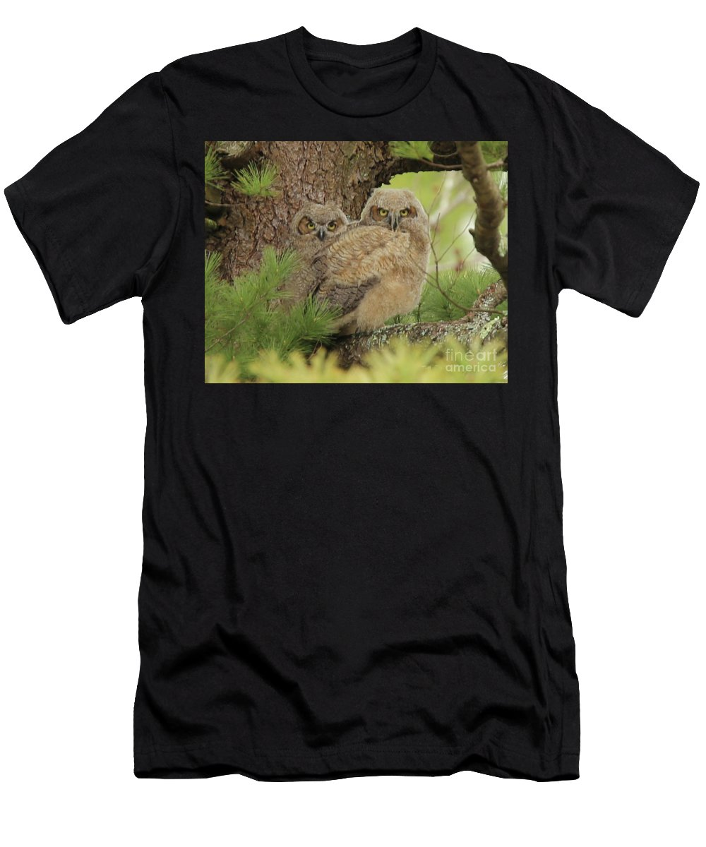 Great Men's T-Shirt (Athletic Fit) featuring the photograph Great Horned Owlets by Laurie Pocher