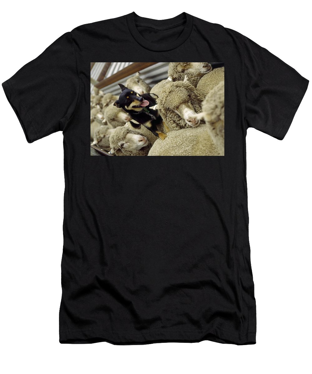 Dog Men's T-Shirt (Athletic Fit) featuring the photograph Great Leaders Push Forward by Simone Amaduzzi Photographer
