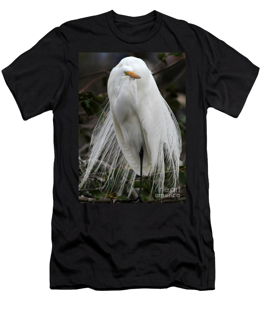 Bird Men's T-Shirt (Athletic Fit) featuring the photograph Great White Egret Windblown by Sabrina L Ryan