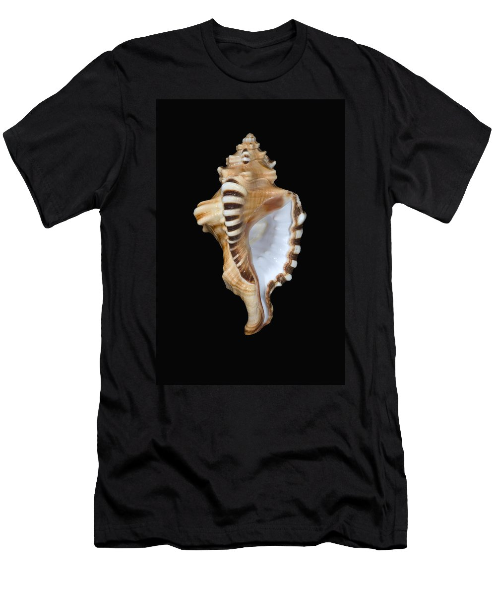 Animal Art Men's T-Shirt (Athletic Fit) featuring the photograph Great White Tooth by Dave Fleetham - Printscapes