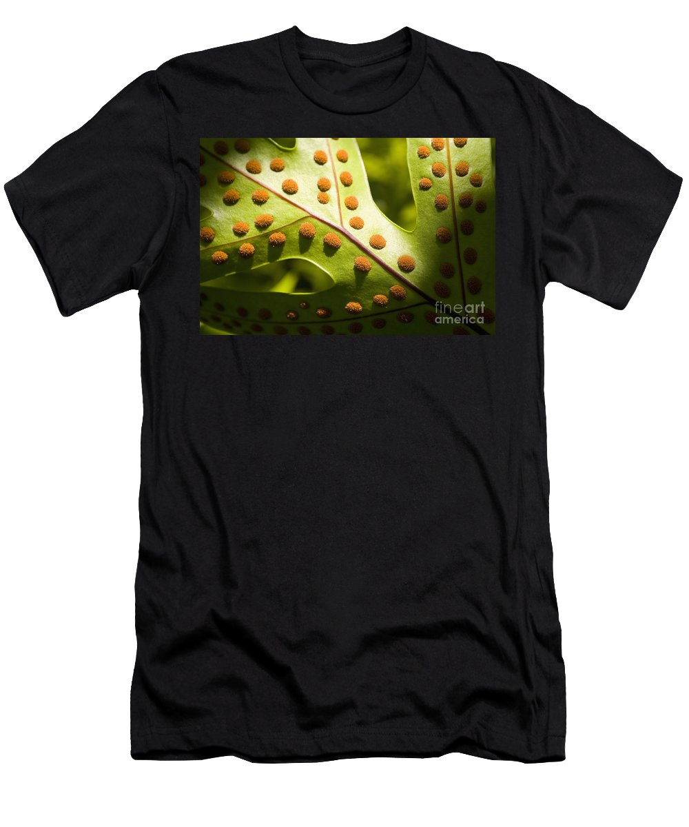 Abstract Men's T-Shirt (Athletic Fit) featuring the photograph Green And Orange Leaf by Tomas del Amo - Printscapes