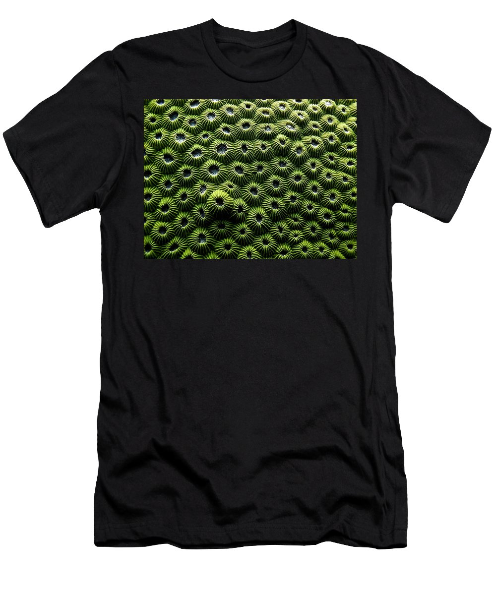 Coral Men's T-Shirt (Athletic Fit) featuring the photograph Green Coral by Dragica Micki Fortuna