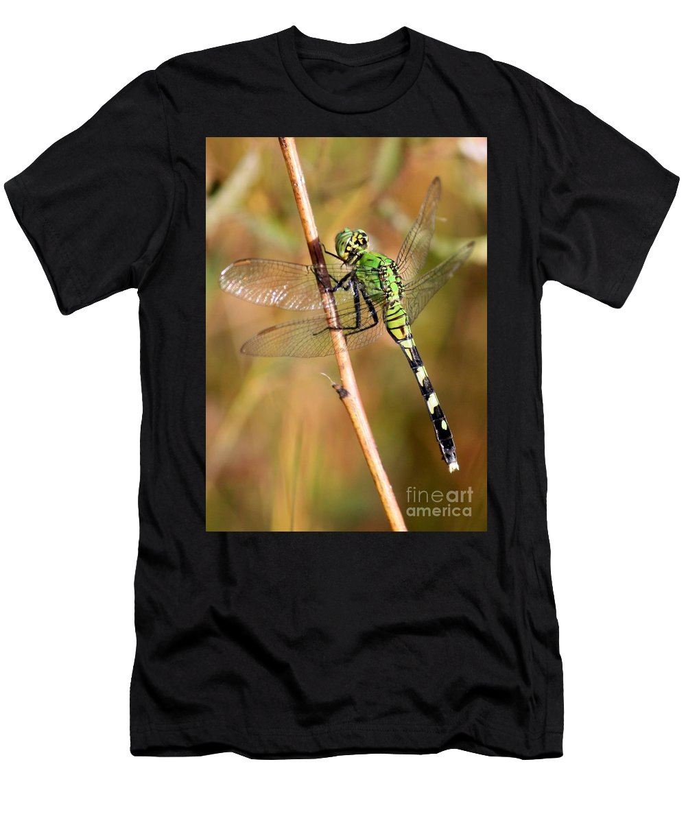 Dragonfly Men's T-Shirt (Athletic Fit) featuring the photograph Green Dragonfly Closeup by Carol Groenen