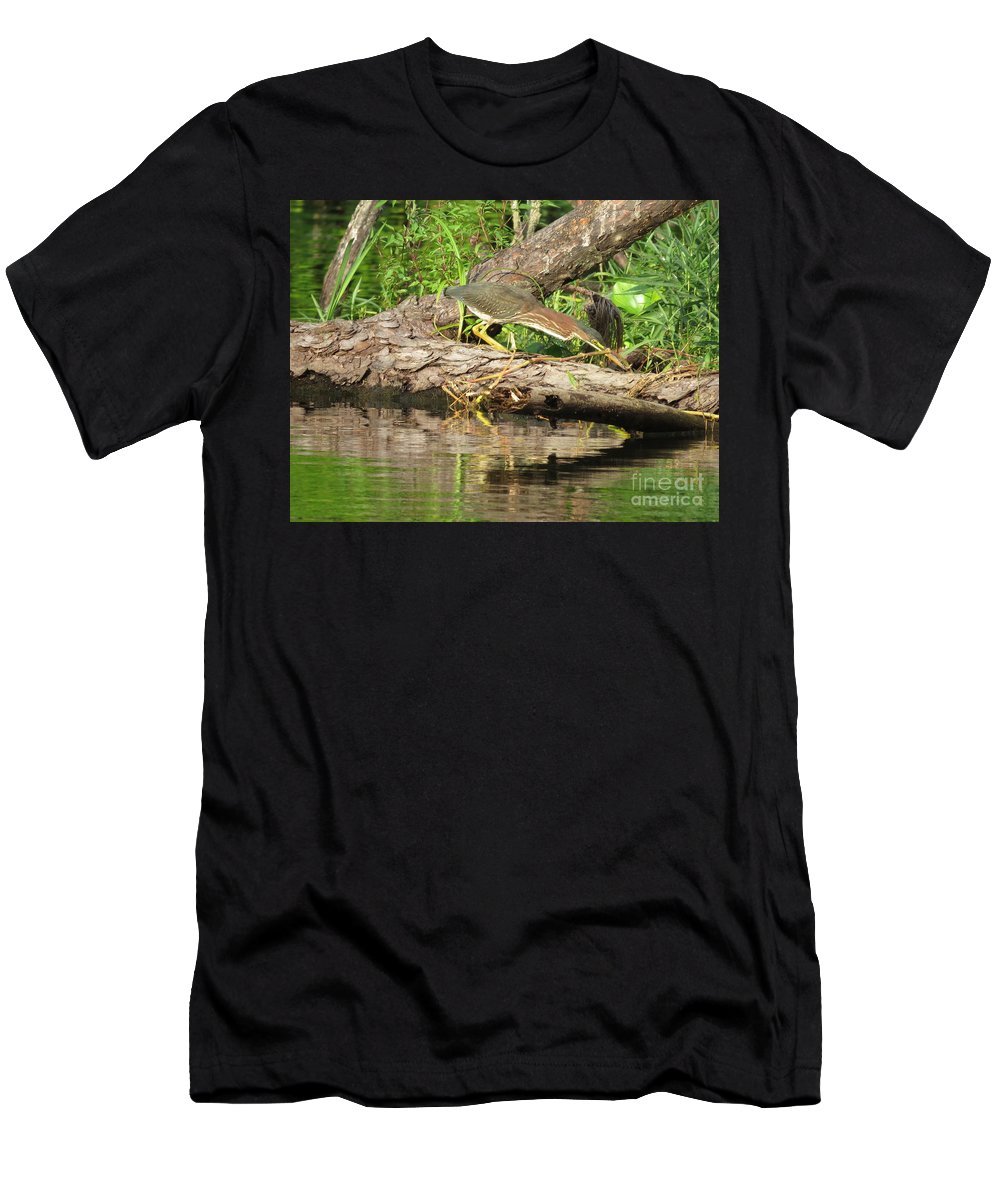 Green Heron Men's T-Shirt (Athletic Fit) featuring the photograph Green Heron Fishing 2 by Charles Green
