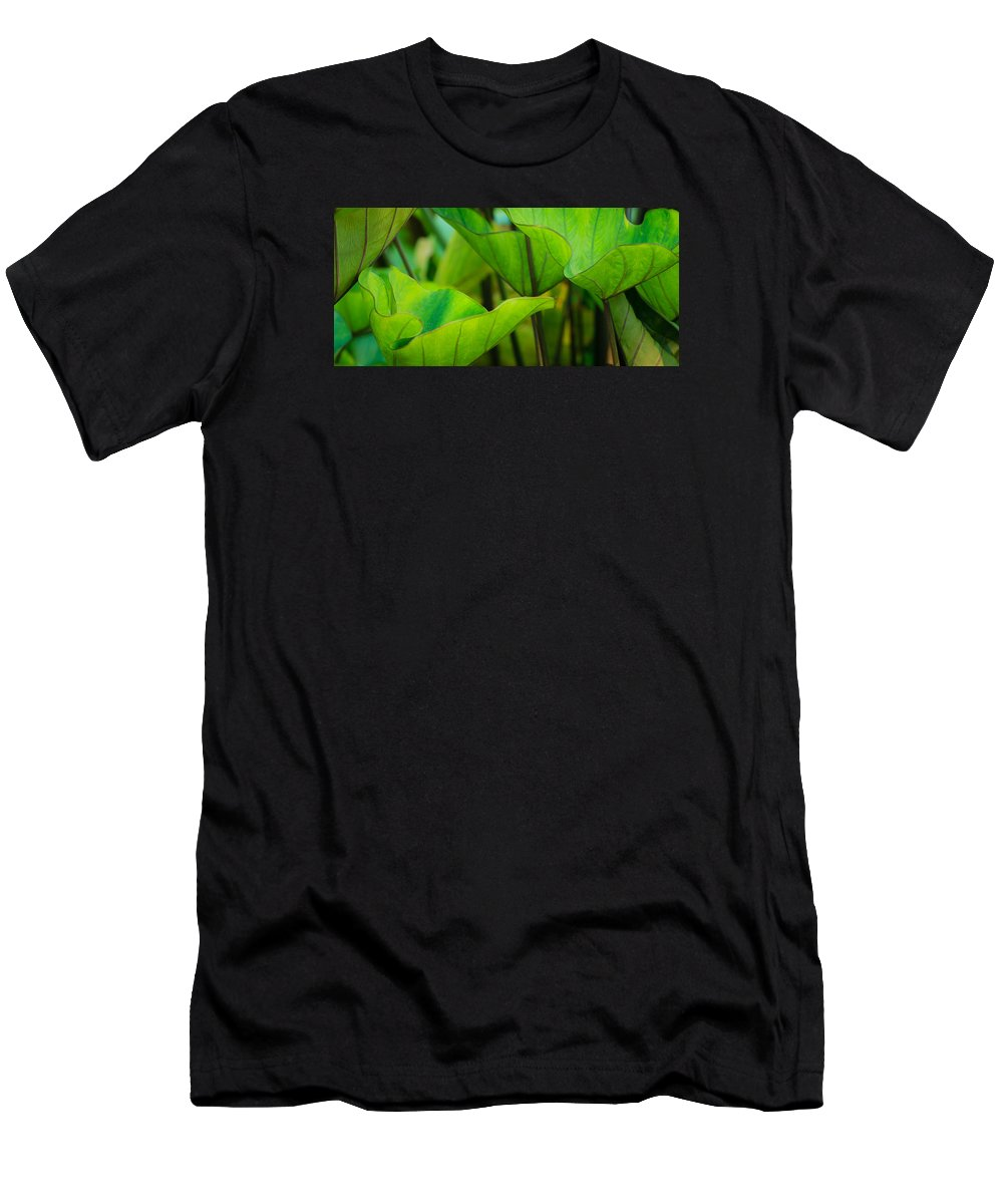Cantigny Men's T-Shirt (Athletic Fit) featuring the photograph Green Leaves At Cantigny by Joni Eskridge