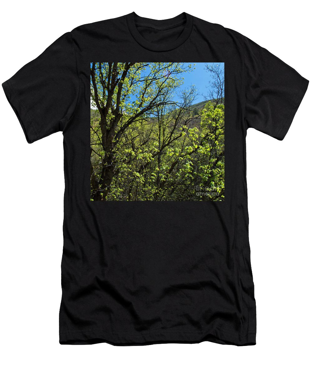 Landscape Men's T-Shirt (Athletic Fit) featuring the photograph Green Reach by Dustin Jensen