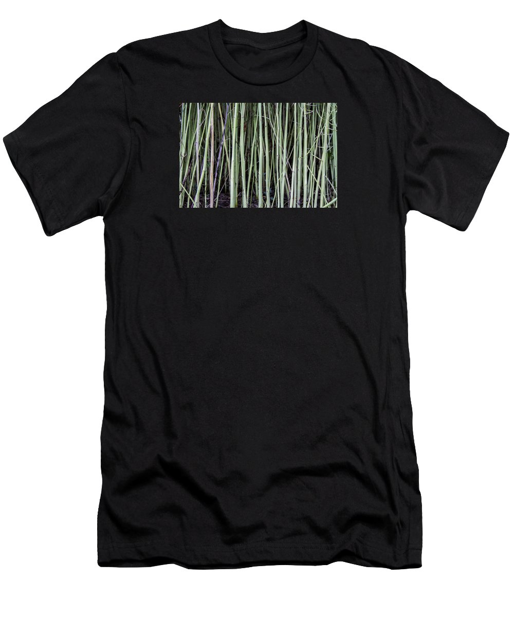 Nature Men's T-Shirt (Athletic Fit) featuring the photograph Green Sticks by Luminita Zamfir