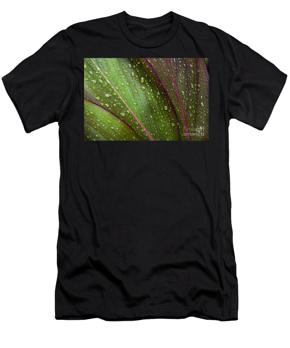 Abstract Men's T-Shirt (Athletic Fit) featuring the photograph Green Ti Leaves by Joe Carini - Printscapes