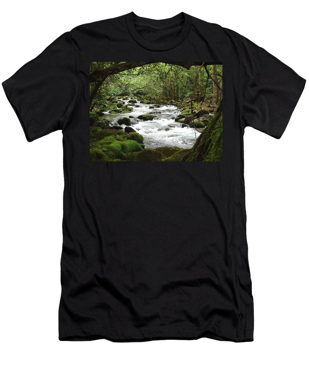 Smoky Mountains Men's T-Shirt (Athletic Fit) featuring the photograph Greenbrier River Scene 2 by Nancy Mueller