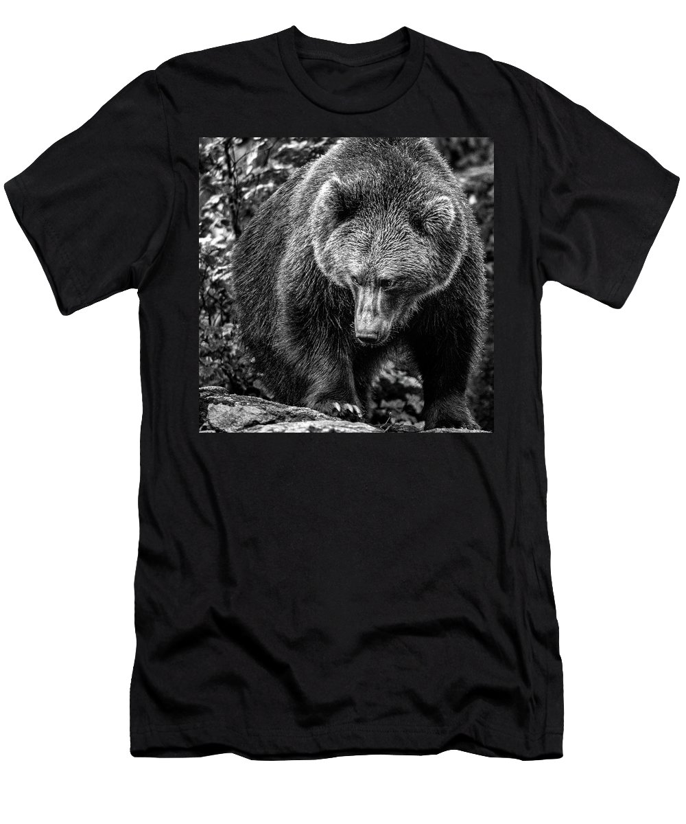 Animal Men's T-Shirt (Athletic Fit) featuring the photograph Grizzly Bear In Black And White by Ineke Mighorst