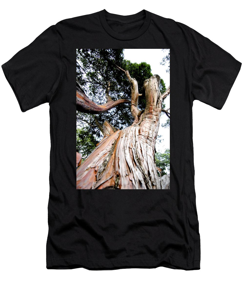 Tree Men's T-Shirt (Athletic Fit) featuring the photograph Growth by Greg Fortier