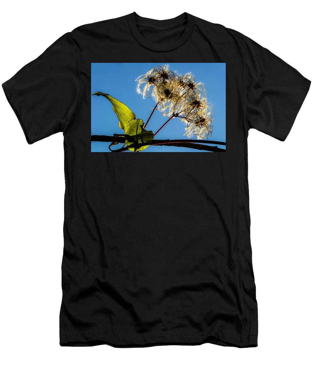 Flower Men's T-Shirt (Athletic Fit) featuring the photograph Hairy Beauty by Wolfgang Stocker