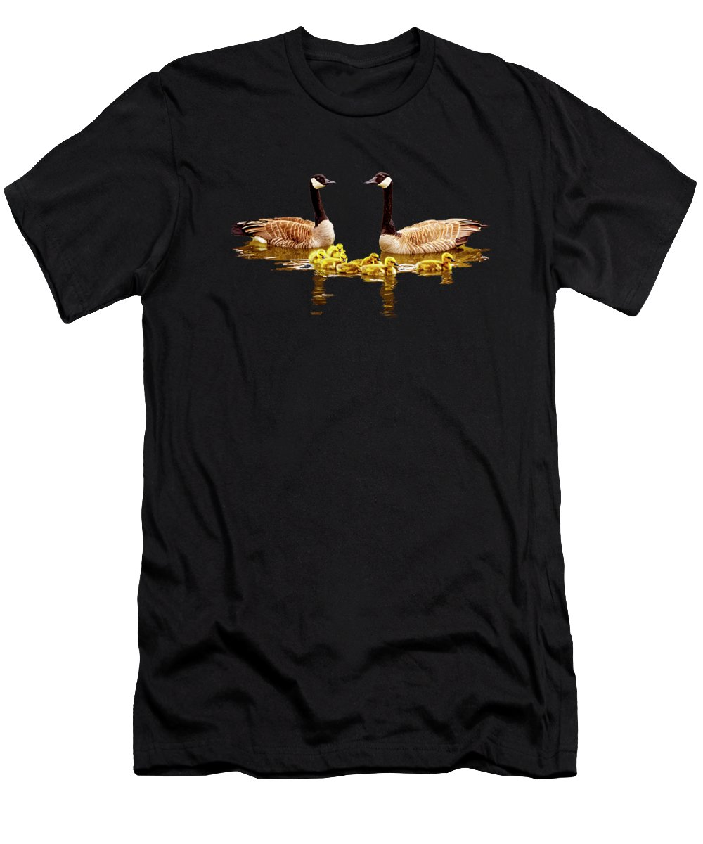 Canadian Goose Photographs T-Shirts