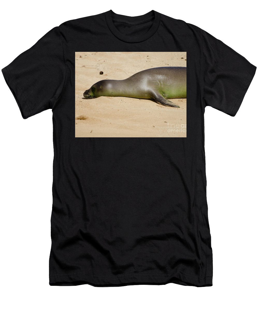 Hawaiian Monk Seal Men's T-Shirt (Athletic Fit) featuring the photograph Hawaiian Monk Seal by Michelle Ferraro