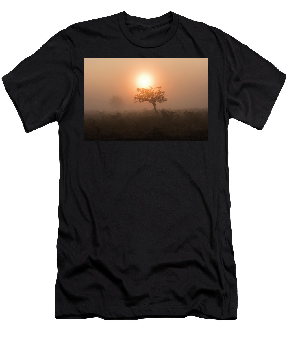 Hawthorn Men's T-Shirt (Athletic Fit) featuring the photograph Hawthorn In The Mist by Natural World Studio
