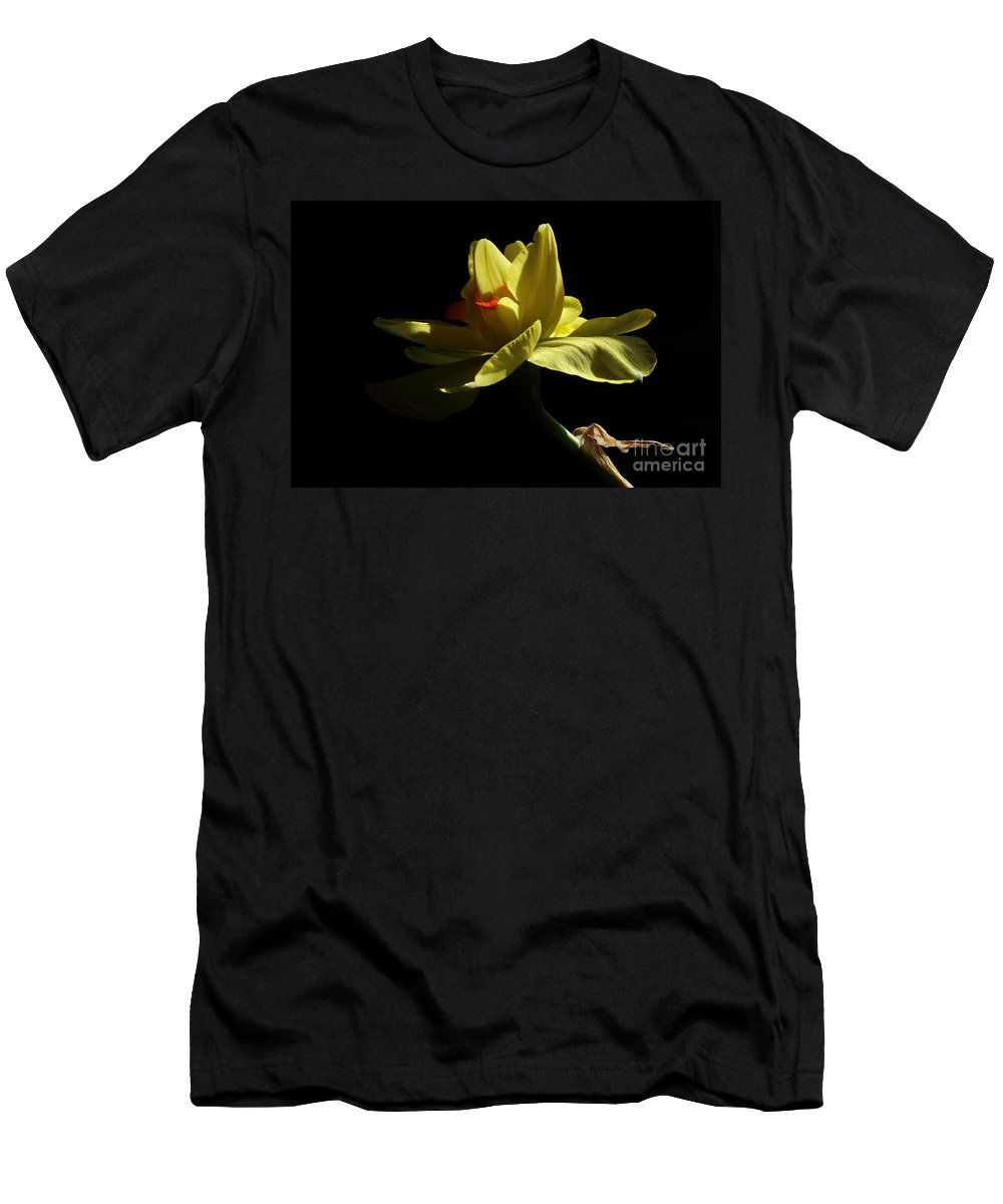 Yellow Daffodil Men's T-Shirt (Athletic Fit) featuring the photograph Healing by Michael Eingle