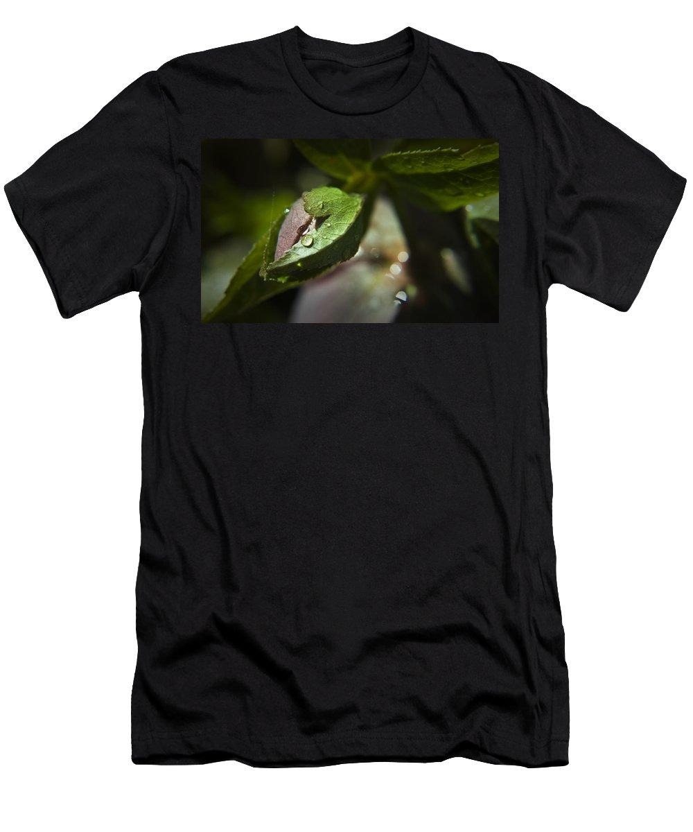 Helleborus Men's T-Shirt (Athletic Fit) featuring the photograph Helleborus Bud by Teresa Mucha
