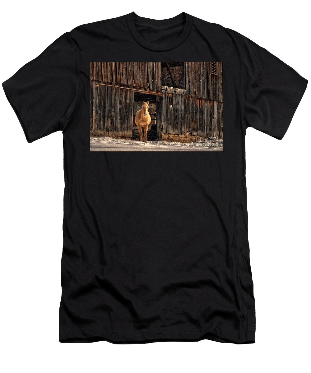 Horse Men's T-Shirt (Athletic Fit) featuring the photograph Hello Sweetheart by Lois Bryan