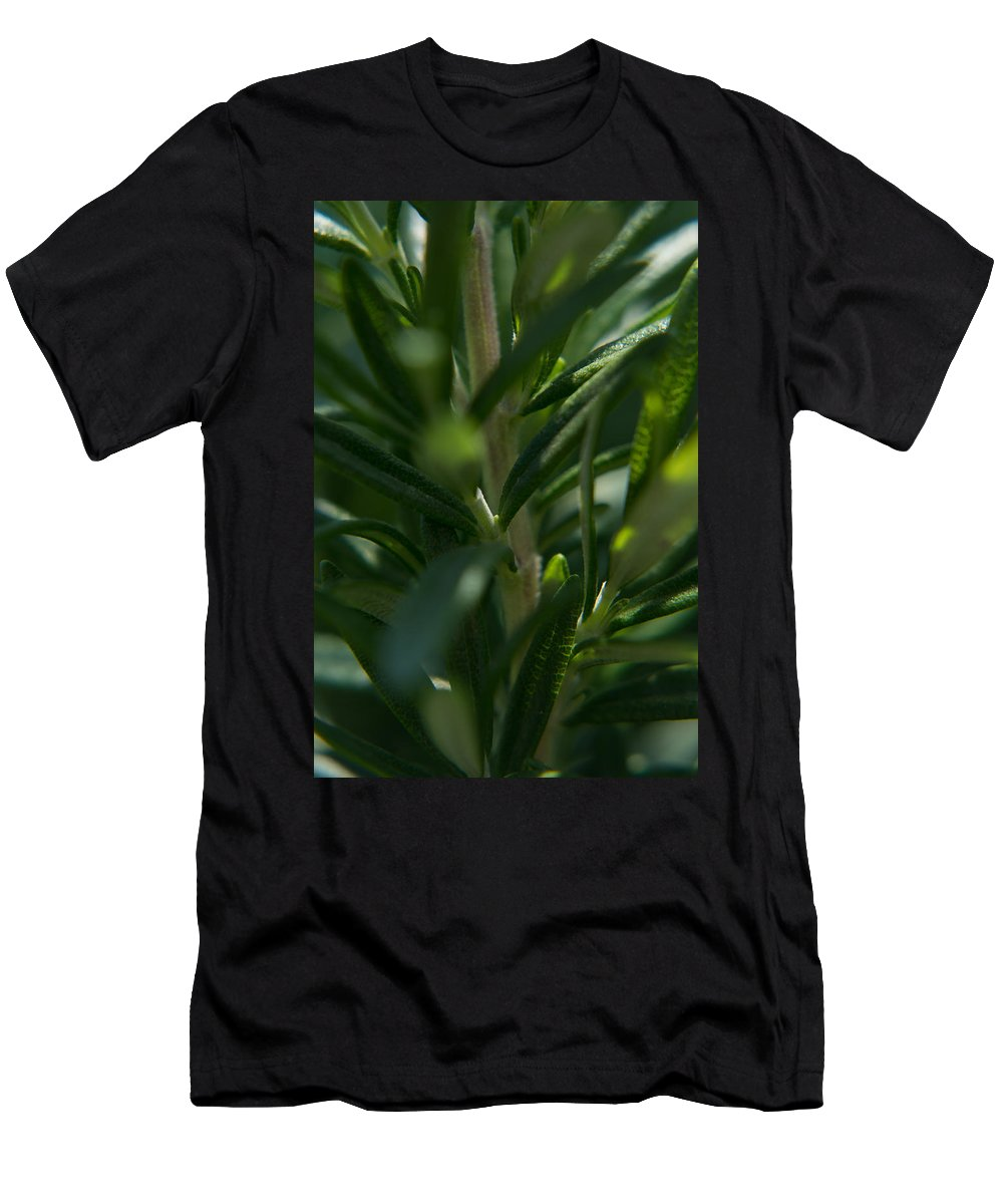 Arizona Men's T-Shirt (Athletic Fit) featuring the photograph Herb #5 by Sharon Vaughn Thompson
