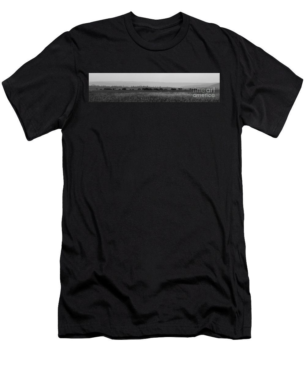 Herd Men's T-Shirt (Athletic Fit) featuring the photograph Herd Of Bison Grazing Panorama Bw by Michael Ver Sprill