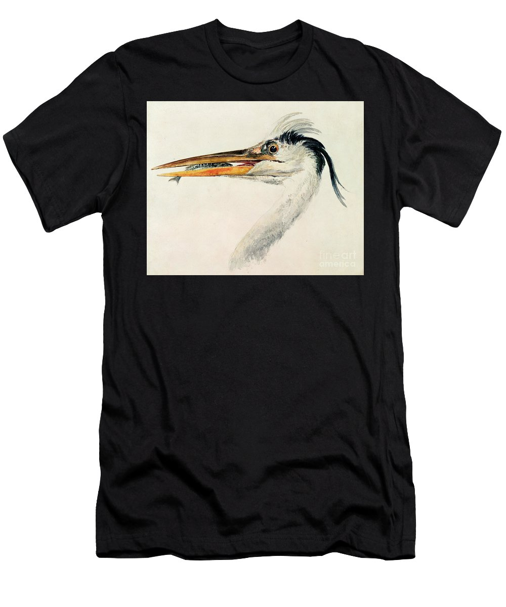 Catch; Mouth; Bill; Bird; Study; Head Men's T-Shirt (Athletic Fit) featuring the painting Heron With A Fish by Joseph Mallord William Turner