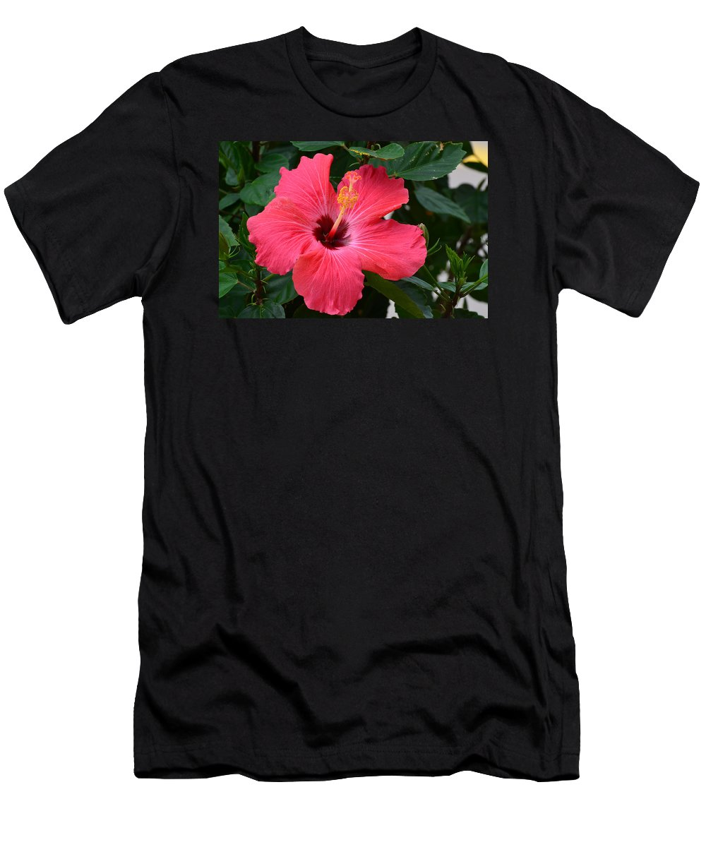 Hibiscus I Jpg. 66e3 hibiscus I Men's T-Shirt (Athletic Fit) featuring the photograph Hibiscus I by Chris Tennis