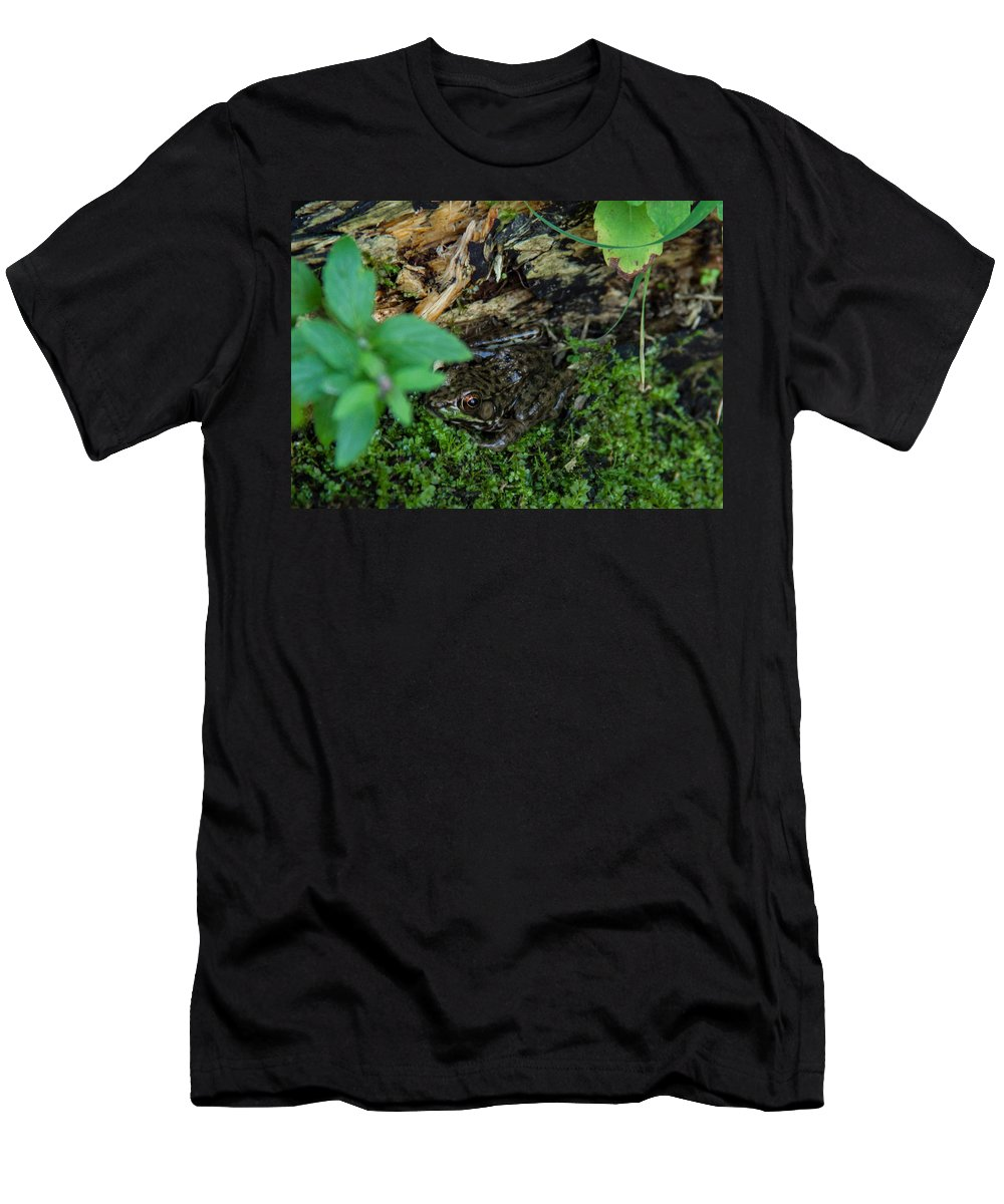 Frog Men's T-Shirt (Athletic Fit) featuring the photograph Hidden Frog by Samantha Flamingos
