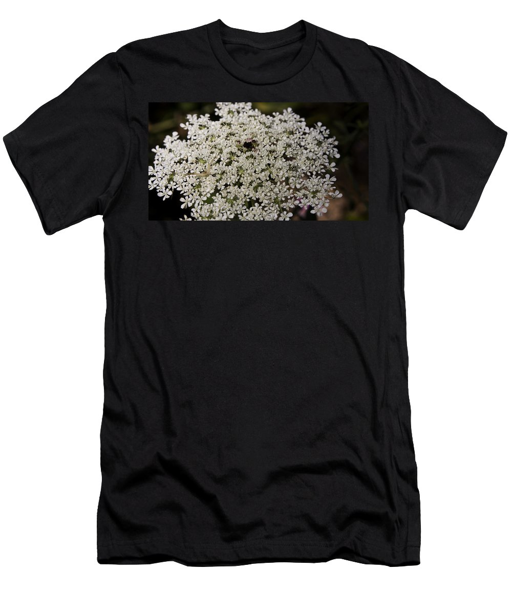 Queen Men's T-Shirt (Athletic Fit) featuring the photograph Hiding In The Lace by Teresa Mucha
