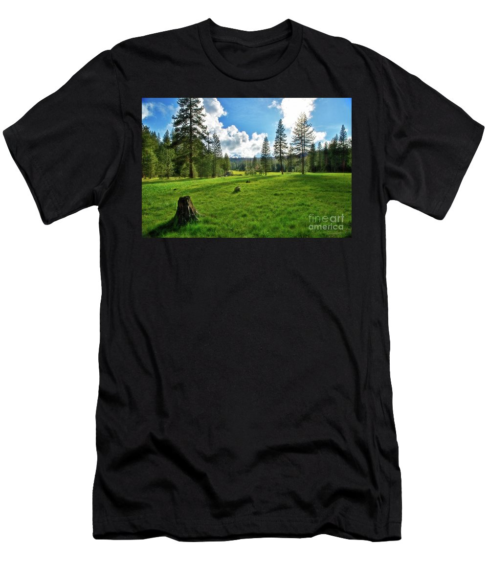 Mountain Meadow Men's T-Shirt (Athletic Fit) featuring the photograph High Meadow by David Arment
